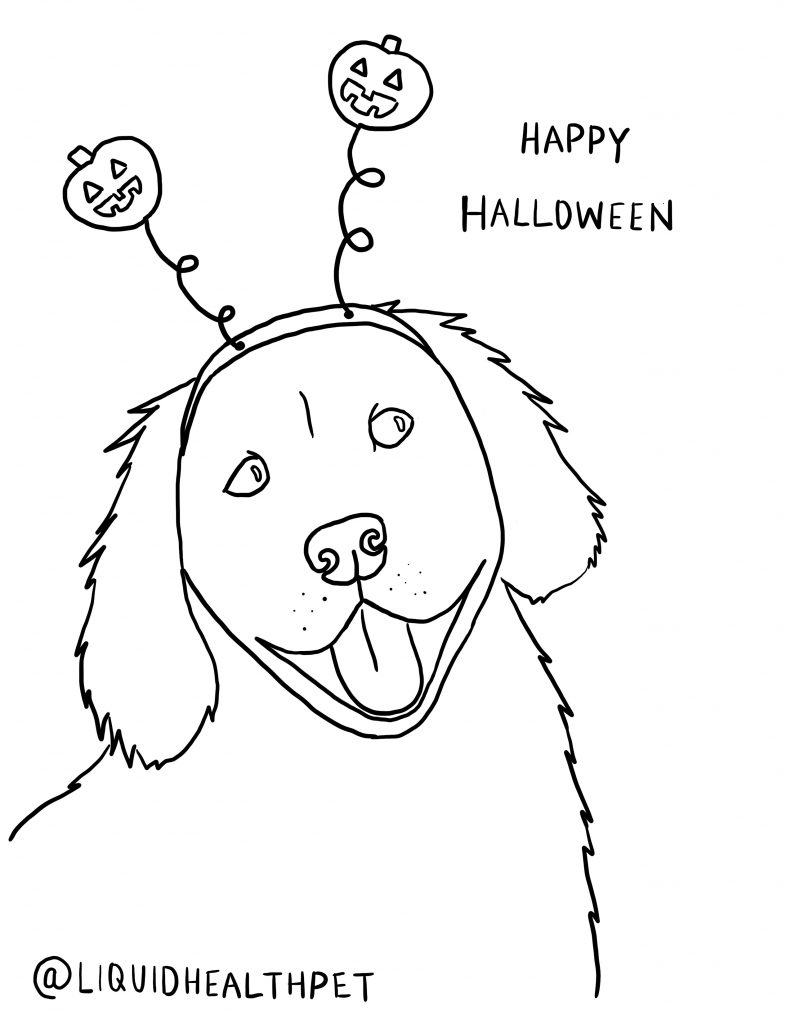 golden retriever halloween pet coloring page