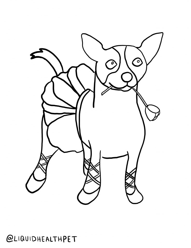 Ballerina dog Halloween pet coloring page