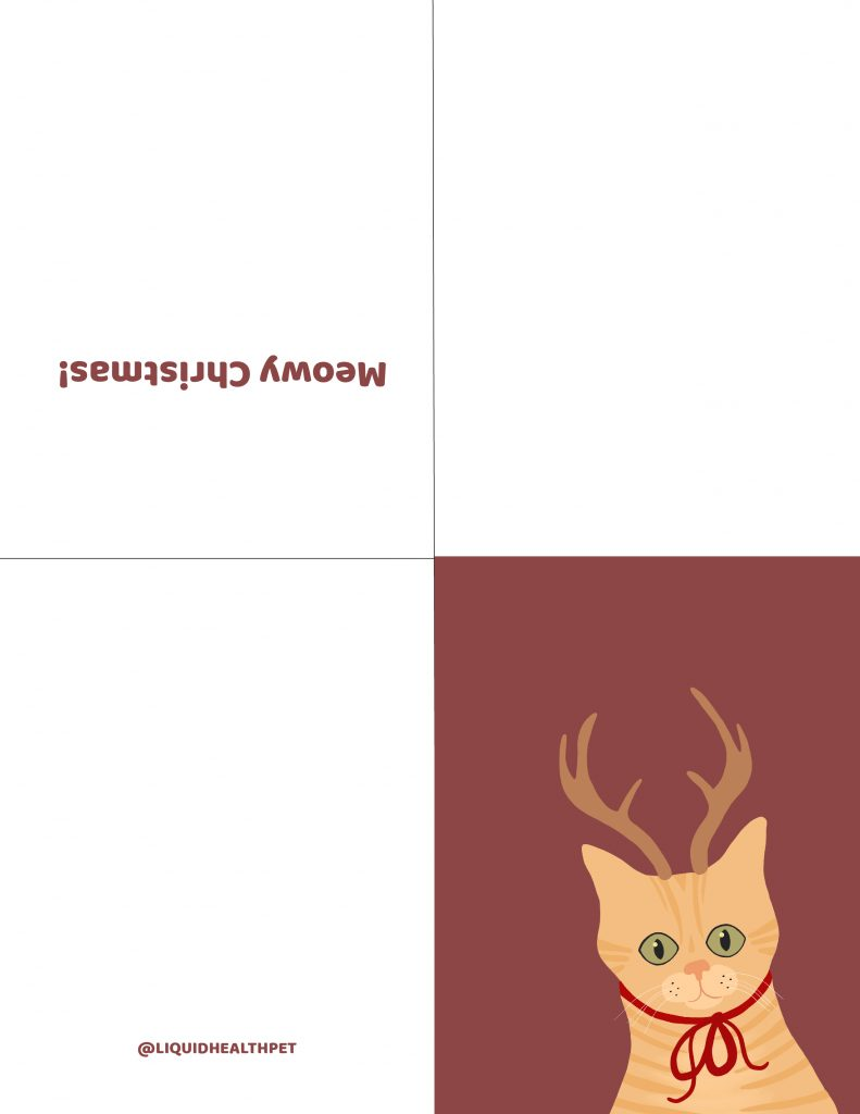 printable Christmas card with a cat on the cover