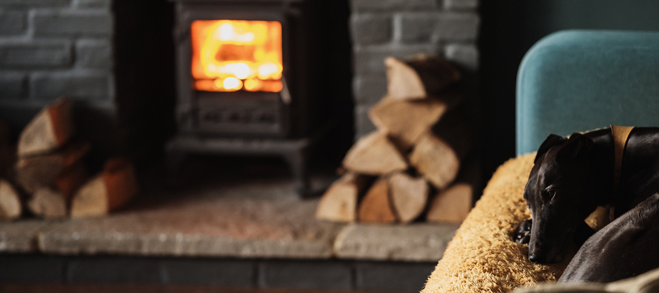 dog laying on couch by fireplace - pet fire safety tips